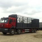 Xe tải 4 chân Chenglong có gì khác biệt